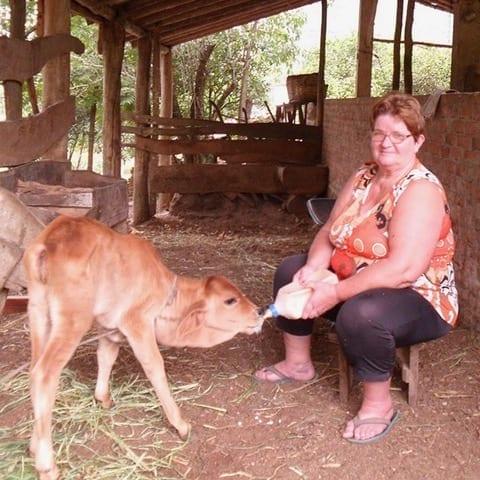 Paula Neu füttert ihr Kalb, Agudo, Brazil, CIDADES SEM FOME