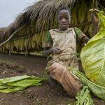 Wie profitieren Kinderrechte von einem Lieferkettengesetz?